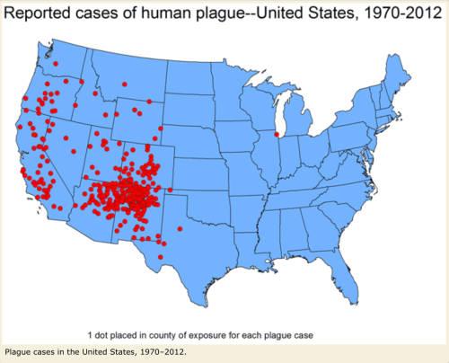 Source: CDC  http://www.cdc.gov/plague/maps/